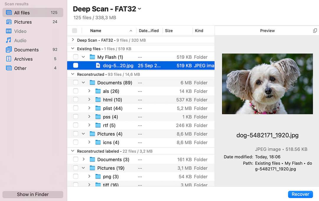 preview the files in Disk Drill