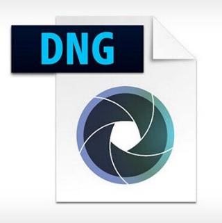 What You Need to Know about DNG Image File Format