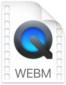 Some Facts about WebM Video File Format