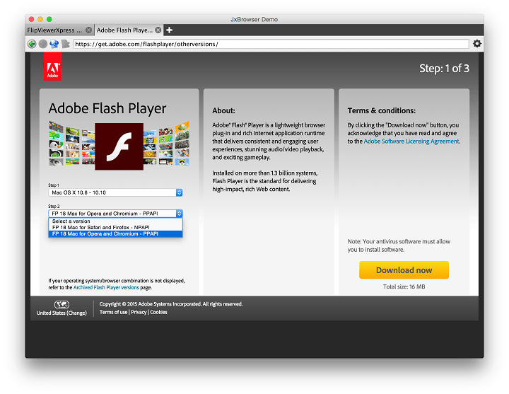 adobe flash player update check