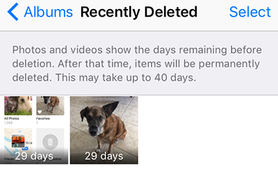 how to retrieve deleted photos on iphone