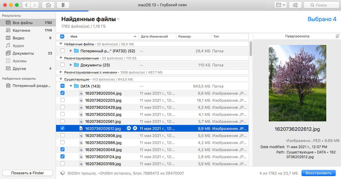 Предварительный просмотр обнаруженных файлов